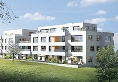 LBH immobilier - Design graphique